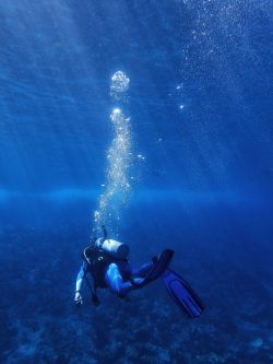 underwater photography of diver during daytime