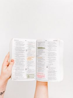 opened Holy Bible